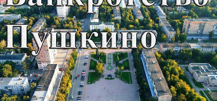 Банкротство в Пушкино, обращайтесь в юридическую компанию «Ликвидатор»