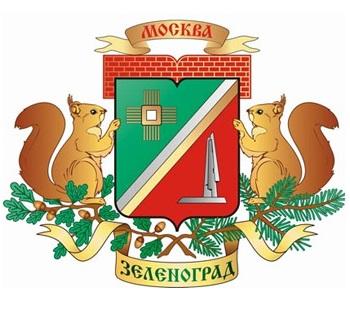 Проведение процедуры банкротства в Зеленограде