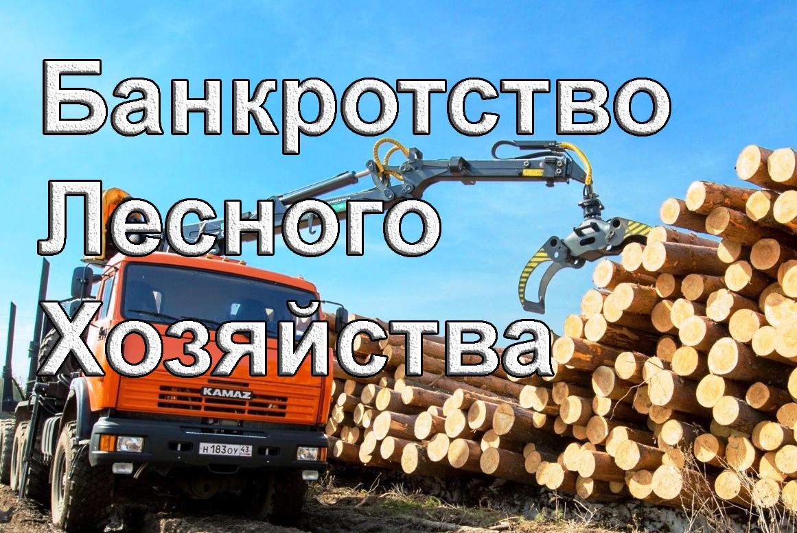 bankrotstvo lesa