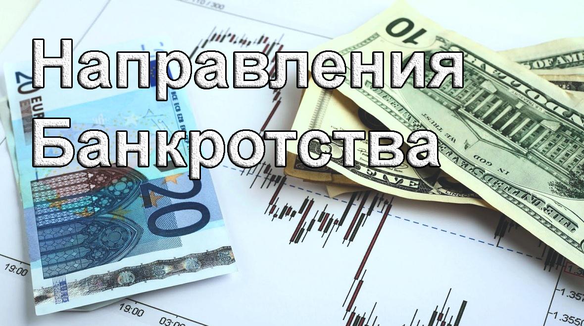 provedenie bankrotstva