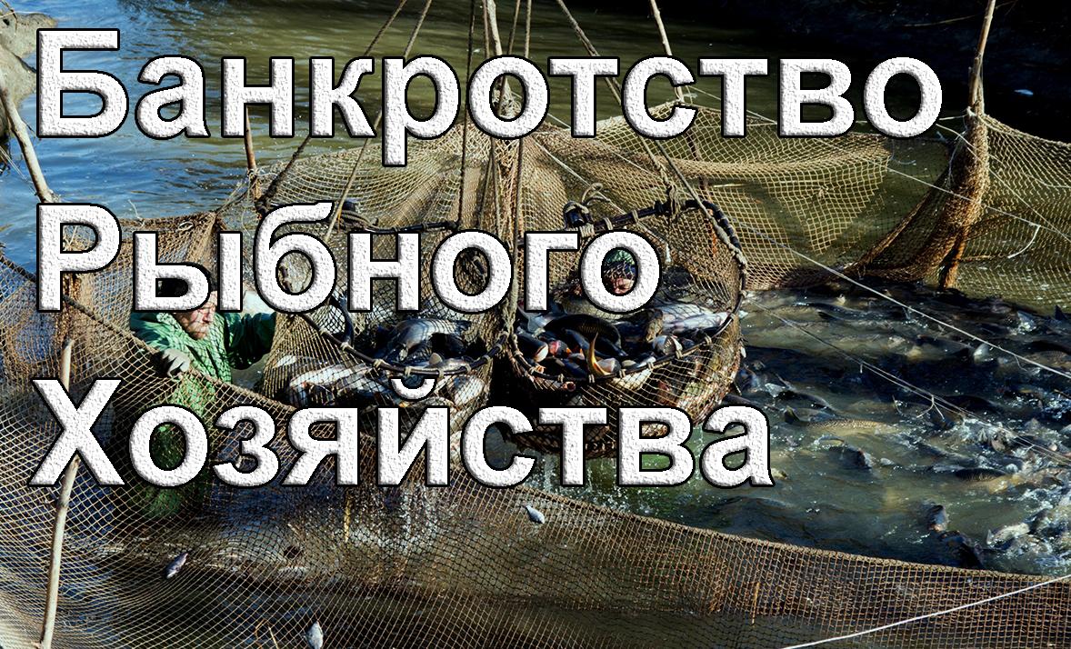 rubhoz bankrot