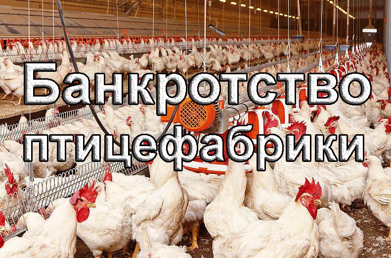 Bankrotstvo pticefabriki